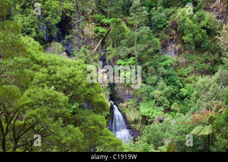 Sabine Falls, Great Otway National Park, Victoria, Australia - Stock Photo