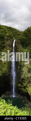 Akaka Falls, Akaka Falls State Park, near Hilo, Big Island, Hawai'i, Hawaii, USA - Stock Photo