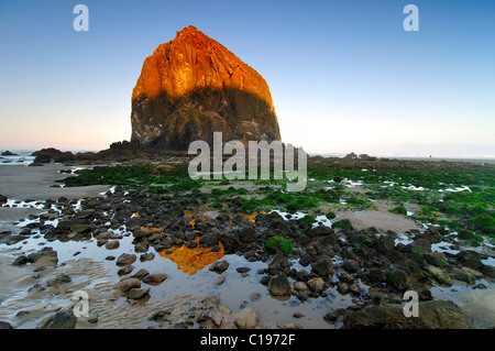 Famous 'Haystack Rock' monolith, solidified lava rock at Cannon Beach, tourist attraction, Clatsop County, Oregon, - Stock Photo
