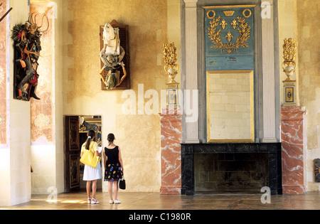 France Deux Sevres Poitou Charentes castle of Oiron shelters the contemporary collection Curios & mirabilia room - Stock Photo