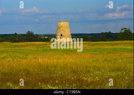 Flower meadow and old mill near Saka, Estonia, Baltic States, Europe - Stock Photo