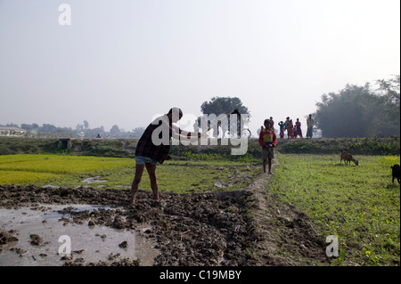 A man tilling his land by hand with a hoe in Bangladesh - Stock Photo