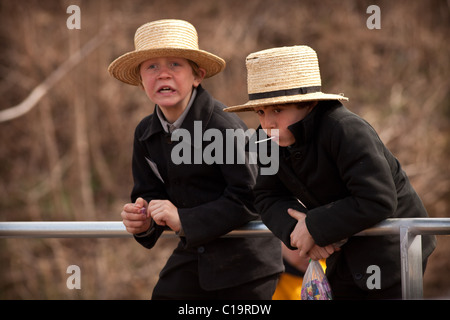 Amish boys watch the horse auction during the Annual Mud Sale to support the Fire Department - Stock Photo