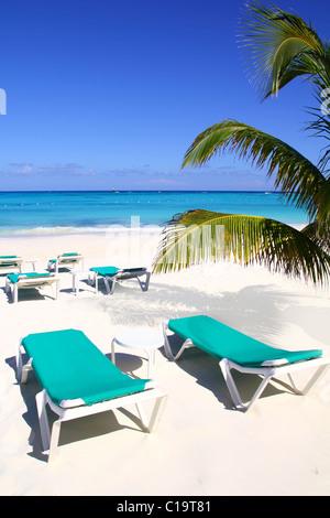 Caribbean beach turquoise sea with green hammocks - Stock Photo