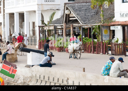 Foreshore scene, Old Stone Town, Lamu, Kenya - Stock Photo