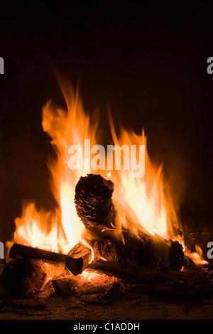 Logs burning in open fire - Stock Photo