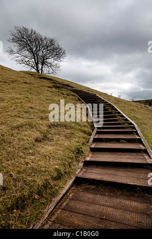 wooden steps giving easy access to the top od St Catherines Hill Winchester - Stock Photo