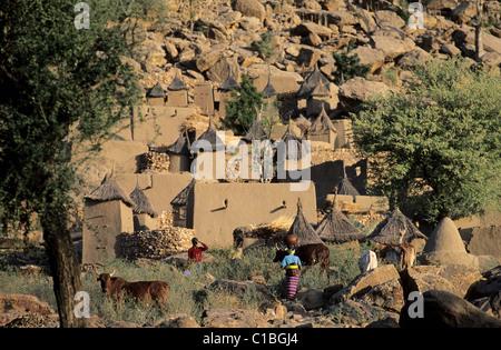 Mali, Dogon Country, the village of Tereli - Stock Photo