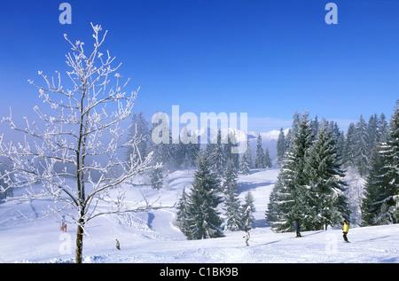 France, Haute Savoie, les Portes du soleil (doors of the sun) area wintertime, Morzine and Les Gets ski station - Stock Photo