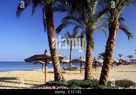 Egypt, Sinai peninsula, the beach of Nuweiba, a little seaside resort in the gulf of Aqaba - Stock Photo