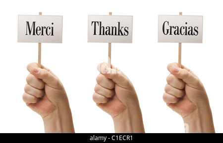 Three Signs In Male Fists Saying Merci, Thanks and Gracias Isolated on a White Background. - Stock Photo