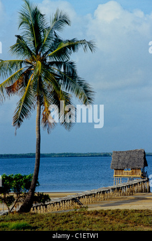 swahili coast and the development of It led to the creation of the monuments of ancient egypt, like the famous pyramids   the swahili civilisation lay on the east african coast, from.