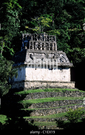 Mexico, Chiapas State, the Maya site of Palenque, temple of the sun - Stock Photo