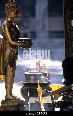 Thailand, Chiang Mai, Incense sticks offering to Buddah - Stock Photo