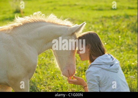 Young woman and a Connemara pony foal - Stock Photo