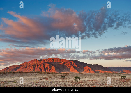 Scenic view of The NamibRand Nature Reserve - Stock Photo