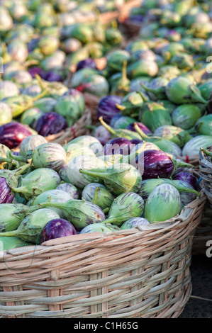 Indian vegetables. Eggplant / Aubergine or Brinjal in baskets at an Indian market. Andhra pradesh, India - Stock Photo