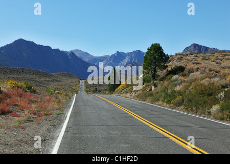 The road went off. Great American road goes through the beautiful desert - Stock Photo