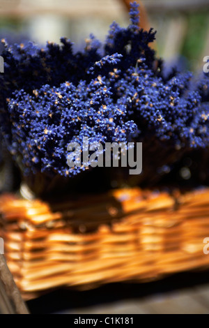 Fresh heather bundles in a small basket on a traditional cart in the village of Lacock in Wiltshire UK - Stock Photo