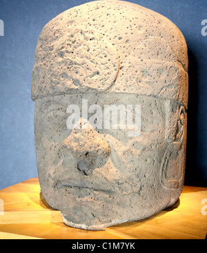 Giant Olmec Head The Anthropological Museum  Mexico City Mexico - Stock Photo