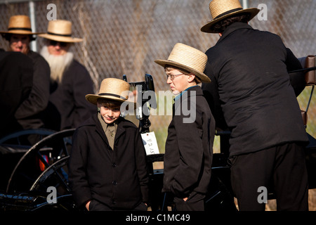 Amish boys watch a horse buggy auction at the annual Mud Sale in Gordonville, PA - Stock Photo