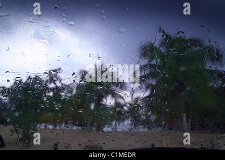 Hurricane tropical storm palm trees from car inside window glass water drops - Stock Photo