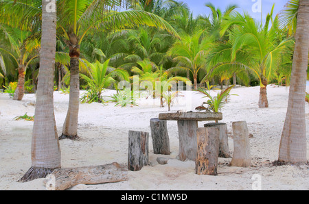 coconut Tulum palm trees beach with table and seats trunk made - Stock Photo