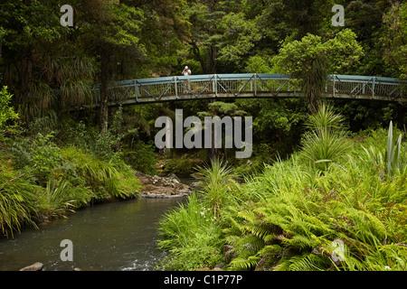 Tourists on bridge across Hatea River below Whangarei Falls, Whangarei, Northland, North Island, New Zealand - Stock Photo