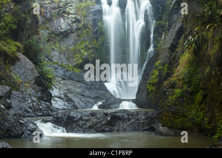 Piroa Falls, Waipu Gorge, near Whangarei, Northland, North Island, New Zealand - Stock Photo