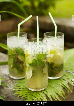 Three mojito cocktails on fern - Stock Photo