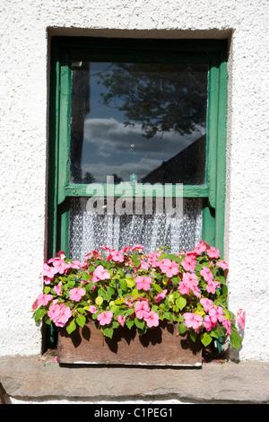 Republic of Ireland, County Sligo, Sligo folk Park - Stock Photo