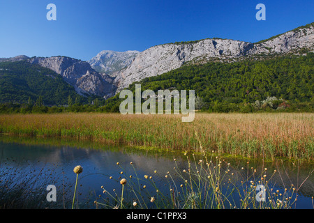 Landscape of river Cetina near Omis - Stock Photo