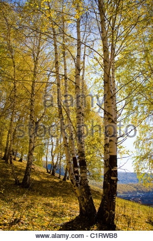 Altai Mountain, Xinjiang, China - Stock Photo