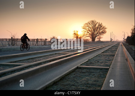 The dawn of a new guided bus route. A lone cyclist uses the Cambridge to Huntingdon guided bus route at dawn in - Stock Photo