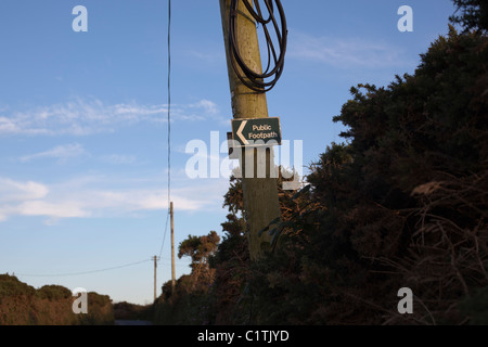 Public footpath sign with arrow on telegraph pole in country lane - Stock Photo
