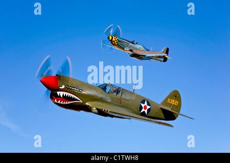 A P-40E Warhawk and a P-51D Mustang Kimberly Kaye in flight near Chino, California. - Stock Photo