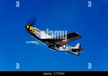 A P-51D Mustang Kimberly Kaye in flight near Chino, California. - Stock Photo