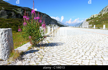 deserted old historic cobble stone mountain road of st. gotthard pass crossing swiss alps - Stock Photo