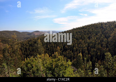 Wide view of a forest and hills near the area of S.Brás de Alportel on Portugal. - Stock Photo