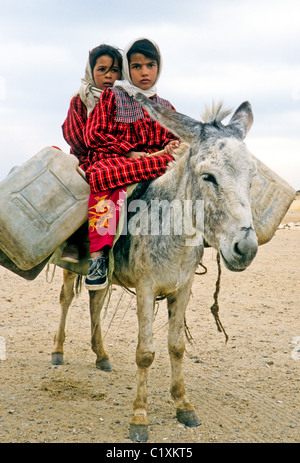 Little girls carrying water on donkey, Sakkara, Egypt - Stock Photo