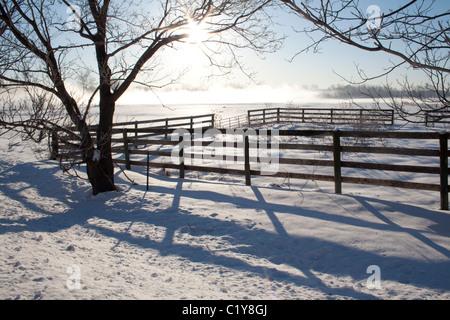 Livestock Corral on Misty, Snowy Morning - Stock Photo
