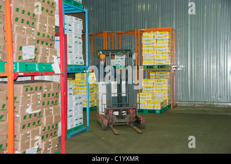 truck loader forklift with full load on pallet in a warehouse in