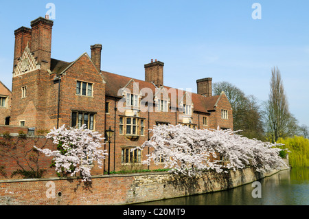 Magdalene College and The River Cam in Spring, Cambridge, England, UK - Stock Photo