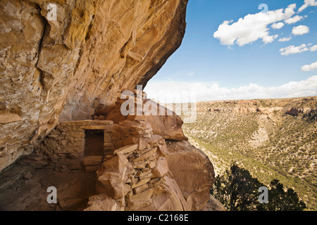 A view looking up the canyon while standing in Balcony House cliff dwelling in Mesa Verde National Park, Colorado, USA.