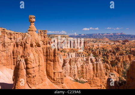 Bryce Canyon National Park Thor's Hammer and Sandstone Hoodoos in Bryce Canyon Amphitheatre Utah USA United States - Stock Photo