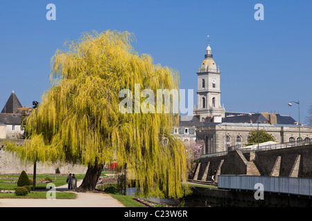 Weeping Willow tree in The Jardin des Remparts, Vannes, Morbihan, Brittany, France, Europe - Stock Photo