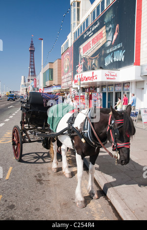A horse drawn carriage on the promenade at Blackpool Beach in Lancashire, England, UK - Stock Photo