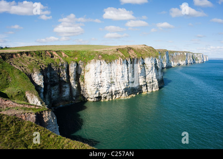 Chalk cliffs looking towards Bempton from Thornwick Bay, Flamborough, East Yorkshire - Stock Photo