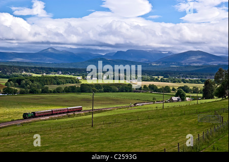 Steam engine Braeriach has arrived at Broomhill Station on the Strathspey Railway from Boat of Garten with Cairngorm - Stock Photo
