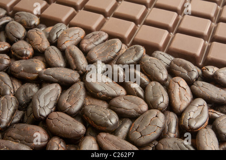 Bar of chocolate, and cocoa beans - Stock Photo